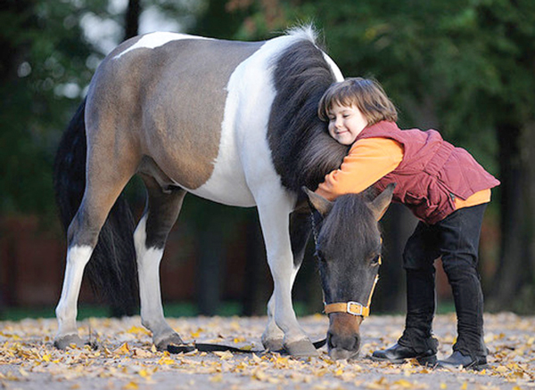 Пусть лошадка подарит удачу